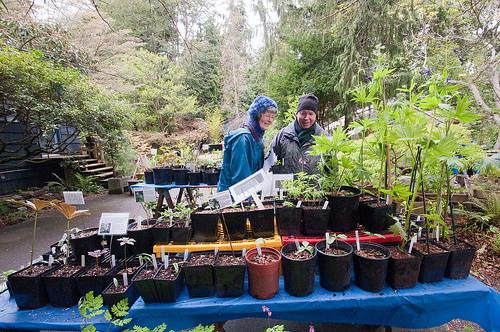 The 2011 Mother's Day Sale - Kruckeberg Botanic Garden